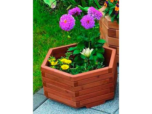 "Blumenkübel sechseckig ""Olli"" B 35 x T 35 x H 18 cm"